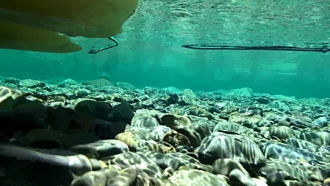 Bottom of the black sea