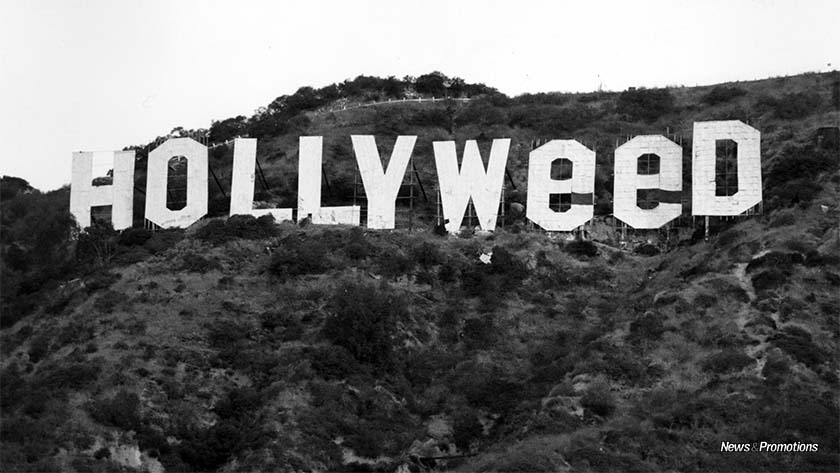 hollyweed-vandalism
